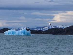 Monacobreen Spitzbergen